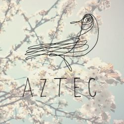Aztec The Band Law Blog